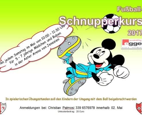 Fussball-Schnupperkurs 2017
